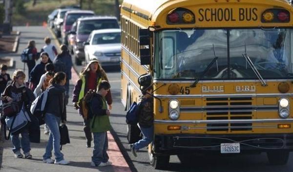 autobus escolar permisos