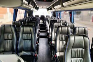 Microbus Mago VIP